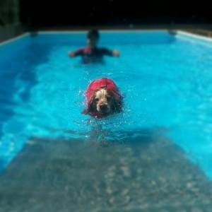 Asia in piscina